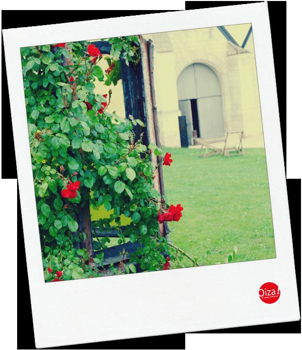 Vue sur la Grange de la Maladrerie de Beauvais (60)